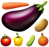 Many kind of fresh vegetables Stock Photos