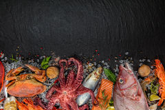 Many kind of seafood, served on crushed ice stock photography