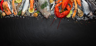 Many kind of seafood, served on crushed ice stock image