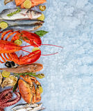 Many kind of seafood, served on crushed ice stock images