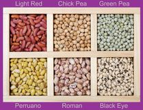 Many kinds of beans Stock Photo