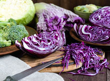 Many kinds of cabbage - red, broccoli, Brussels sprouts, white, napa cabbage. Royalty Free Stock Photo