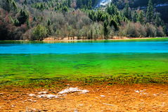 Many kinds of color lake waters. The lake water presents multi-colored in Jiuzhaigou Sichuan China Royalty Free Stock Photo