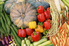 Many kinds of vegetables Royalty Free Stock Photography