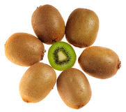 Many kiwi Stock Photo