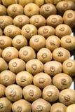 Many Kiwi in a Market Royalty Free Stock Photo