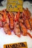 Many langoustines at a market stall Stock Photos