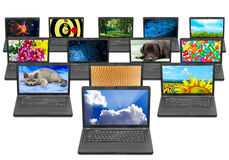 Many laptops with different pictures on the screen Royalty Free Stock Photo