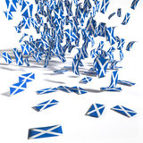 Many leaflets and flags of Scotland Royalty Free Stock Images
