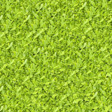 Many leaves seamless continuous background by over-sized photo. Many leaves seamless continuous texture background by over-sized photo stock images