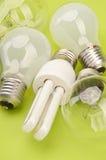 Many light bulbs. Stock Images