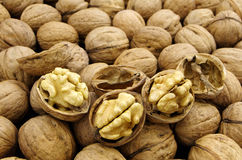 Many lined nuts Royalty Free Stock Images