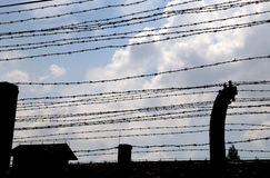 Many lines of dangerous and sharp barbed wire Royalty Free Stock Image