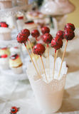 Many lolly pops. Candy lolly pops. Ladybug. Royalty Free Stock Image