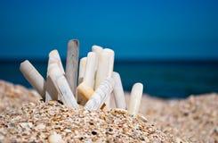 Many long seashells white gray on a blue sea beach sand beach summer sunny day Royalty Free Stock Photography