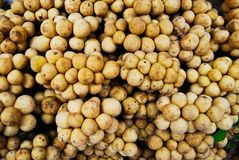 Many longan in fresh market Royalty Free Stock Photo