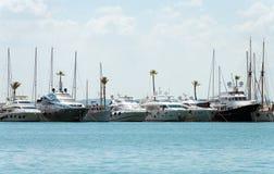 Many luxury yachts. Stock Image