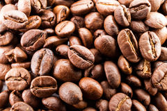 Many macro coffe beans closeup on coffee background. Royalty Free Stock Image