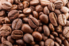 Many macro coffe beans closeup on coffee background. Stock Image