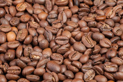 Many macro coffe beans closeup on coffee background. Stock Photos
