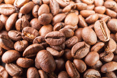 Many macro coffe beans closeup on coffee background. Royalty Free Stock Photos