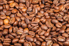 Many macro coffe beans on coffee background. Royalty Free Stock Photography