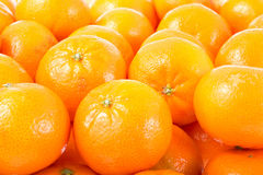 Mandarines background. Royalty Free Stock Images