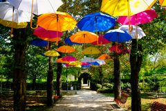 Many, many colorful umbrellas to the delight of all stock photos