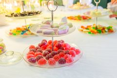 Many marshmallow and candy bar. royalty free stock image