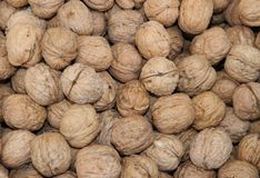 Many mature Brown walnuts in winter sold at market. Many mature Brown walnuts in winter sold at local market Stock Images
