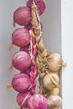 Many mature onions Royalty Free Stock Photography