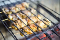 Many meat skewers barbequed on charcoal. In the restaurant royalty free stock photography