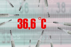 Many mercury thermometers and bodys temperature. 36.6 C in red Royalty Free Stock Photography