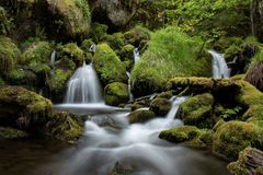 Lush green forest surrounds river and waterfalls Stock Photography