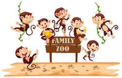 Many monkeys on zoo sign Stock Photo