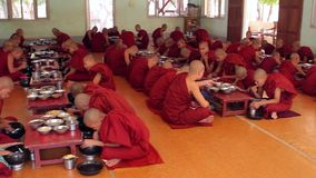 Many monks in red robes. stock footage