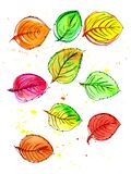 Autumn leaves watercolor. Many multi-colored autumn leaves in watercolors. Steep graphical contour Royalty Free Stock Photos
