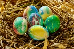 Many multi-colored Easter eggs lie in the nest. Nest of grass and branches royalty free stock image