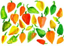 Many multicolored sweet peppers. Green and red and orange and yellow and brown and maroon. On white background, watercolor Royalty Free Stock Photo