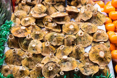 Many mushrooms at a market stall Stock Photo
