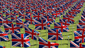 Many national flags of the United Kingdom in green field. Stock Photography