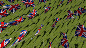 Many national flags of the United Kingdom in green field. Royalty Free Stock Images