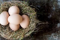 Many natural easter eggs in a birds nest, happy easter concept Royalty Free Stock Photography