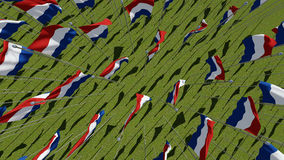 Many Netherlands flags. View from above. Royalty Free Stock Image