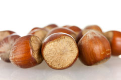 Many Nuts with a strongly pronounced structure pho Stock Images
