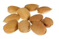 Many Nuts with a strongly pronounced structure pho Royalty Free Stock Photography