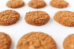 Many oat cookies on white background royalty free stock image