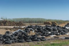 Many old junk tires or used rubbish car wheels. Ecology disaster  concept Royalty Free Stock Photography