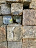 Many old logs stacked on the floor. Many old logs stacked on the floor, background stock photo
