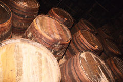 Many old wood barrels on a wine factory Royalty Free Stock Photo